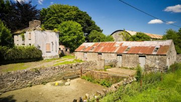 Longford land with development potential guided at €9,000/ac